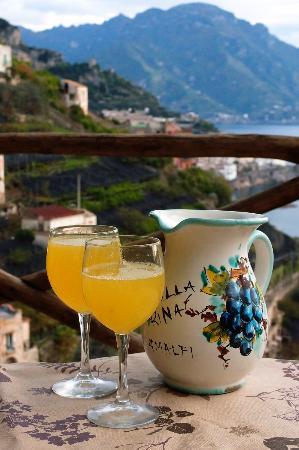 Villa Rina Country House Amalfi: fresh lemons