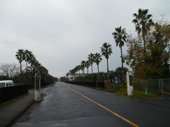 Kanoya, Japan: 自衛隊の基地にあります