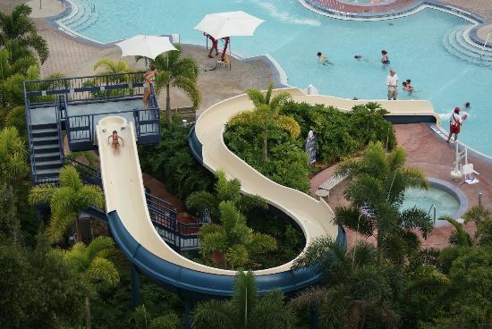 Contemporary Hotel Disney World Florida