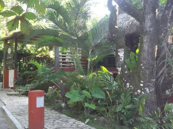 Yaxkin Hostel : La vista desde la entrada del hostel