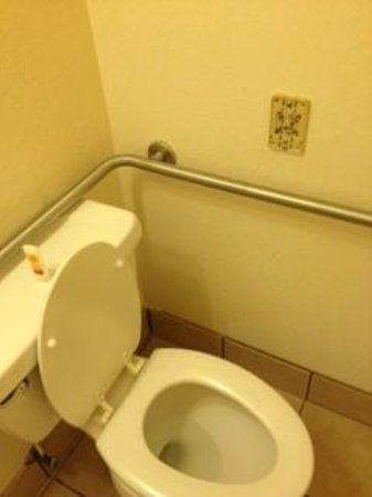 Econo Lodge Inn & Suites: Toilet seat was blistered. Needs to be replaced.
