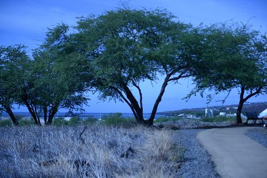 Pu'ukohola Heiau: view of the bay from the Heiau