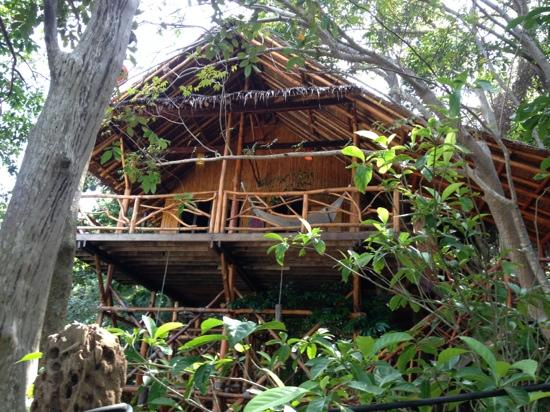 Viking Palace Resort: tree house 3