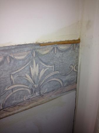Georgian Court Bed & Breakfast Guest House: peeling wall decal