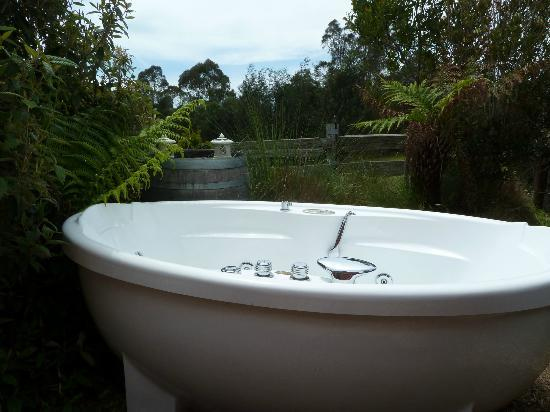 Tin Dragon Trail Cottages: Anyone for a dip :)