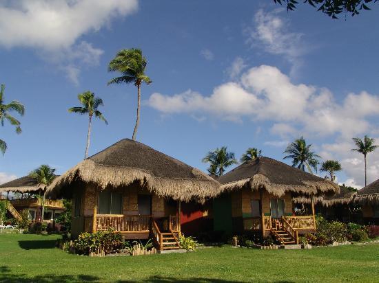 Liquid Dumaguete: Beach front cottage