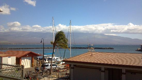 Maui Ocean Center: View from outside to harbor
