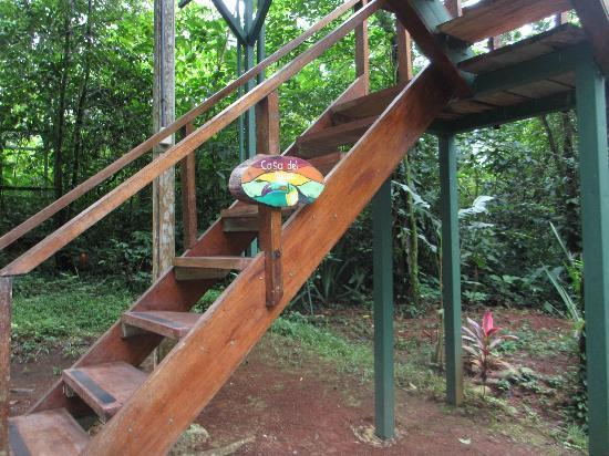 ‪‪Tree Houses Hotel Costa Rica‬: Treehouse! :)