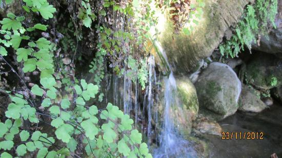 Solstice Canyon: Water Fall