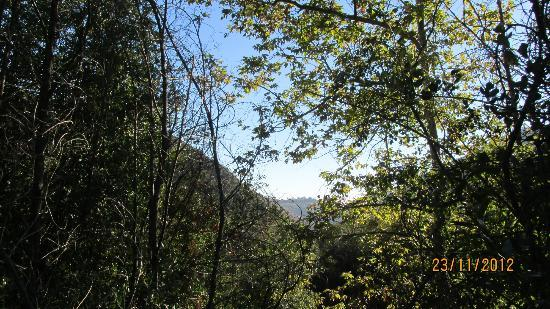 Solstice Canyon: Beauty