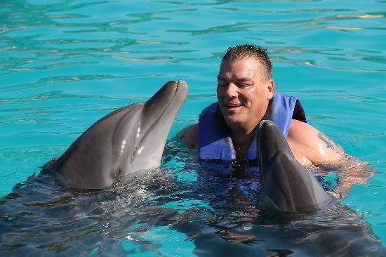 Marival Residences Luxury Resort: Swimming with the Dolphins excursion.