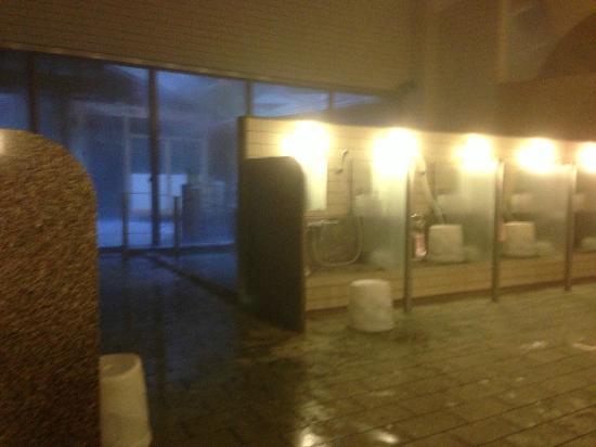 โรงแรมฮาโกเน่โนโมริโอกาดะ: cleansing area of hot spring