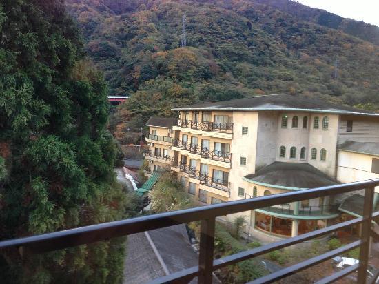 岡田箱根町酒店照片