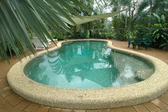 Hibiscus Lodge: Cool pool just for you