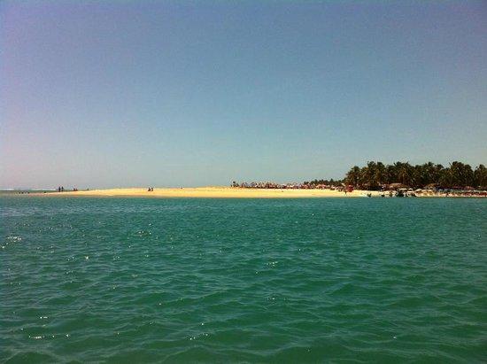 """Gunga Beach: Praia do Gunga vista da """"lancha"""""""