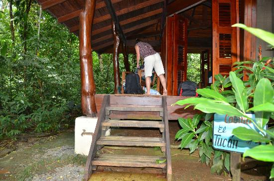 Playa Nicuesa Rainforest Lodge : Our Cabin at Nicuesa.
