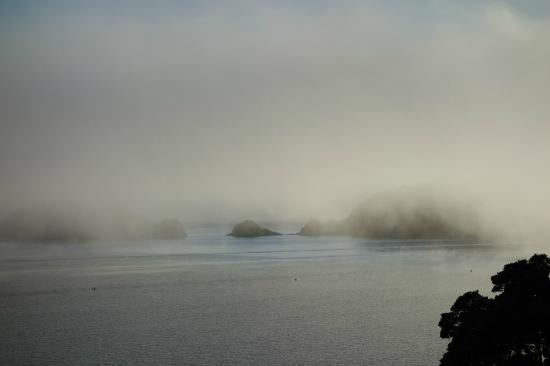 Blue Pacific Apartments Paihia: morning fog - view from the balcony