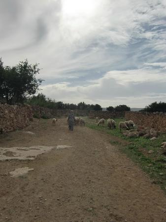 Tigmi Al Yom : Sur un chemin depuis le gîte