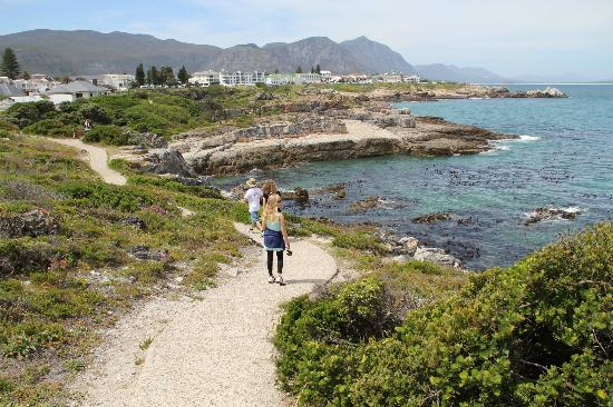 Harbour Vue Guest House: the cliff path leading to Hermanus