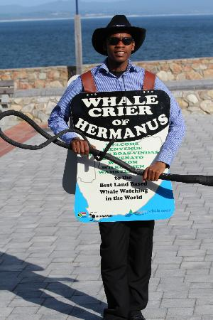 Harbour Vue Guest House: The world's only Whale Crier