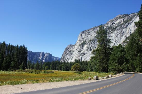 Evergreen Lodge at Yosemite: Yosemite Valley