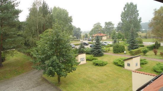 Bukowy Dworek Hotel: Widok z okna