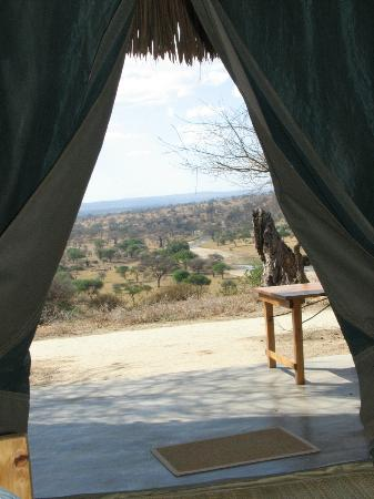 Tarangire Safari Lodge: View from the tent