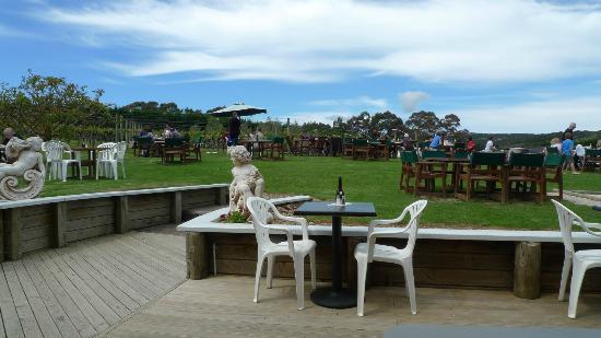 جزيرة واهيكي, نيوزيلندا: Wineyard in Wild on Waiheke
