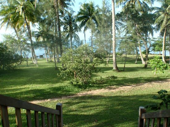 Mango Bay Resort: View from our veranda