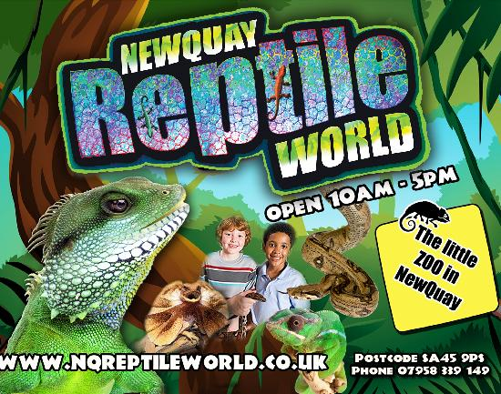 Reptile World New Quay: the little zoo in NewQuay