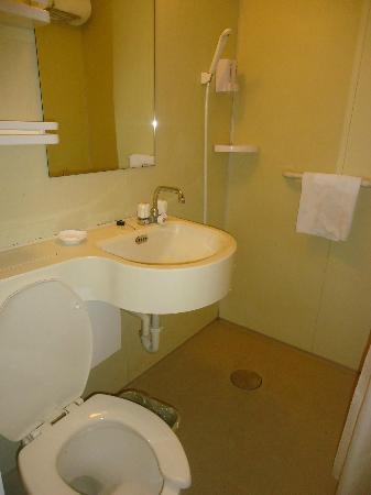 Manhattan Jinling Hotel: Plastic walled bathroom
