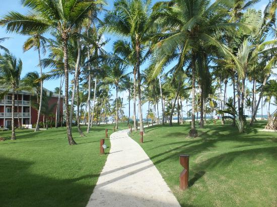Barcelo Bavaro Beach - Adults Only照片