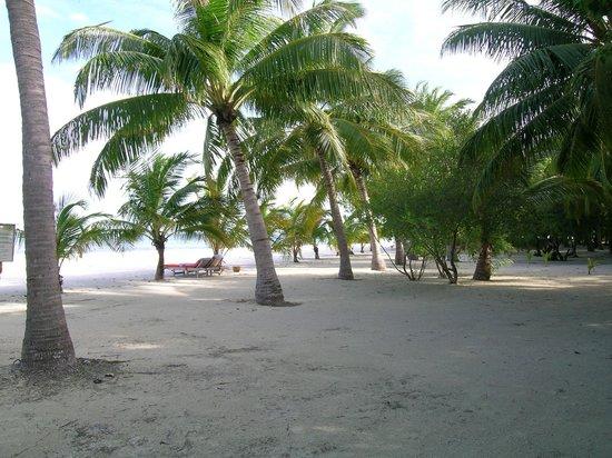 Club Med Kani:                   spiaggia