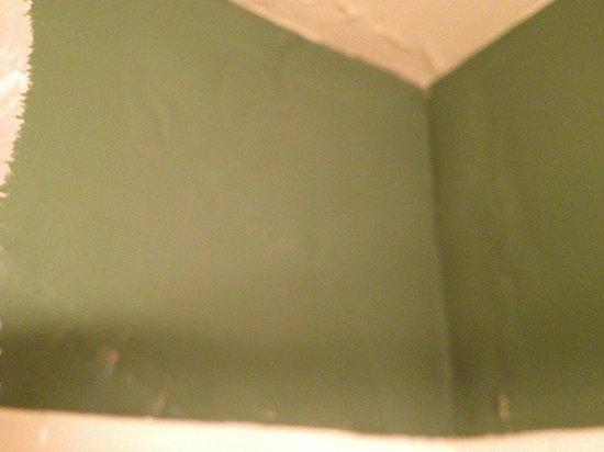 Astor Hotel: Walls pealing paint