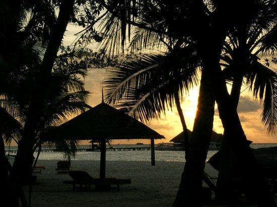 คลับเมดคานิ:                   tramonto