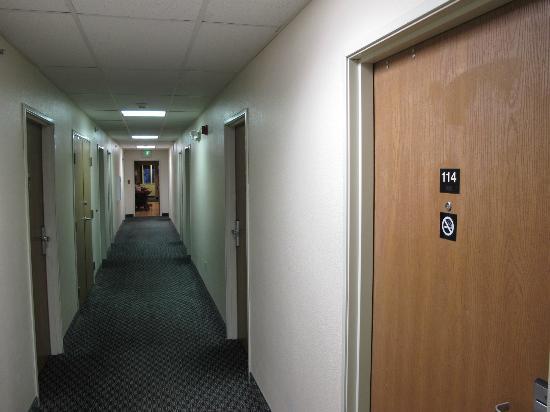 Super 8 Buena Vista: the corridor
