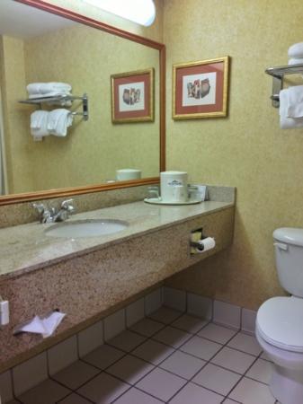 Wingate by Wyndham West Monroe: Bathroom