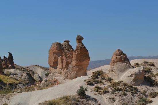 Ramada Cappadocia: Cammello - Cappadocia