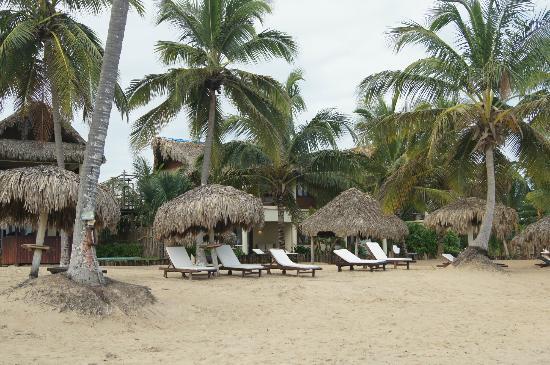 Zoetry Agua Punta Cana: Hotel Palapas