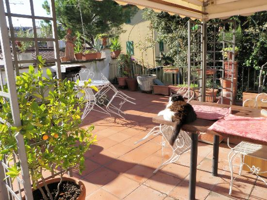 Hotel Il Bargellino: view of the sunny terrace from our room