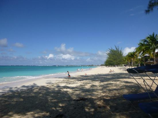 Grand Cayman Beach Suites: view of 7 mile beach from hotel