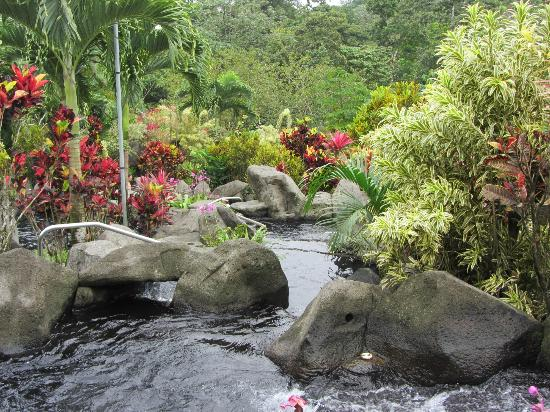 Arenal Kioro Suites & Spa: More views of the grounds at Kioro