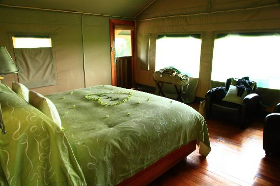 Wilderness Safaris Seba Camp: La chambre