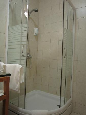 Berkeley Hotel & Day Spa: Powerful shower