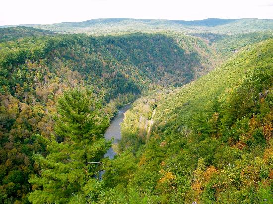 Pensilvanya: Grand Canyon of Pennsylvania