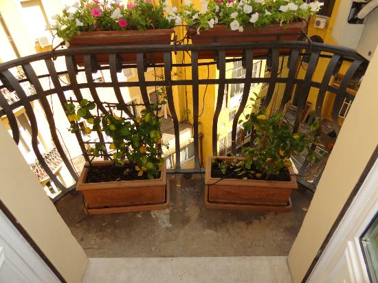 Residenza Cellini: The flower boxes on the balcony