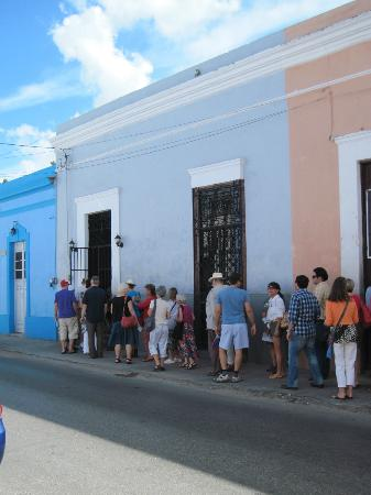 Merida English Library House & Garden Tours: Tuesday's Tour on Calle 68