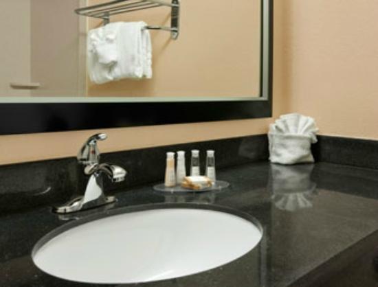 Baymont Inn & Suites Charlotte-Airport Coliseum: Bathroom