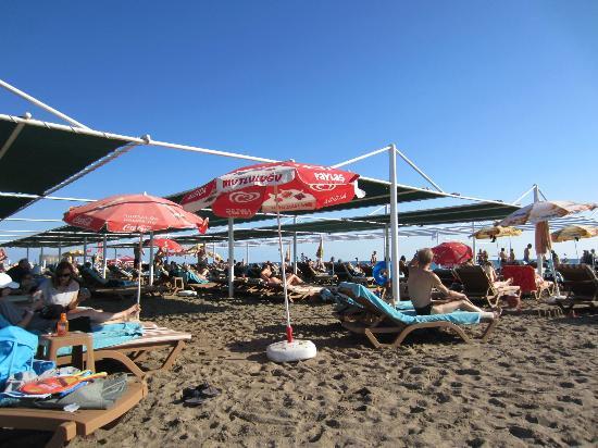 Vera Verde Resort: Strand