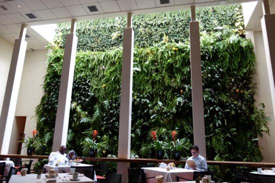 Emiliano Hotel: restaurant